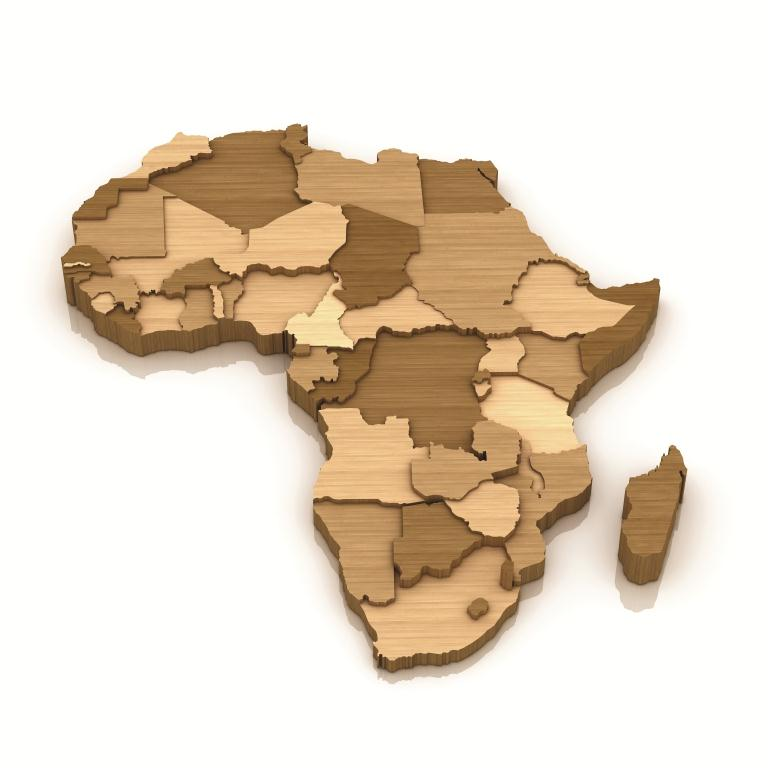 Business In Africa Is An Art Not Science